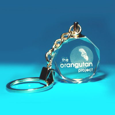 2D Gem Photo Keyring 32 X 32 X 12