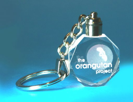 2D Grand Gem Keyring with Light 35 X 10 X 40